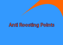 Anti Roosting Points
